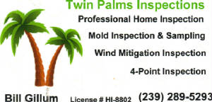homeinspect/TwinPalms.JPG